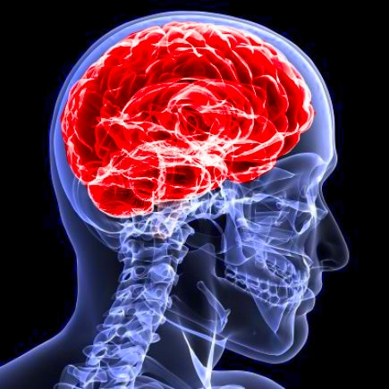Lowell, Massachusetts Brain Injury
