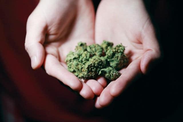 marijuana dui lawyer